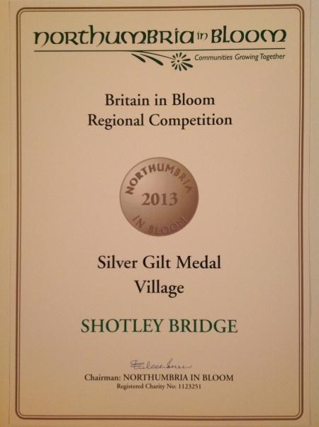 Silver Gilt Medal