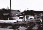 3 Medomsley Drift Mine at ElmPark